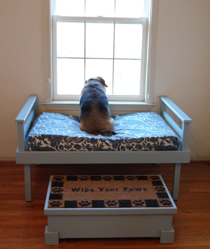 Cheap Petfriendly Home Ideas With Dog Bedroom Ideas.