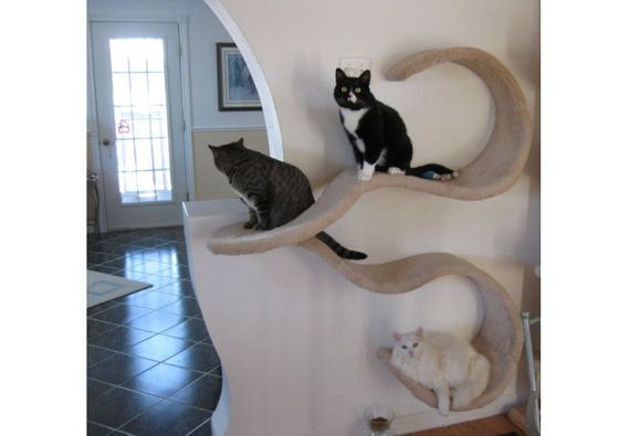 Double Wave cat shelf in wood